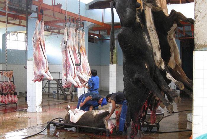 Abancay está consumiendo carnes rojas y de chancho sin autorización sanitaria