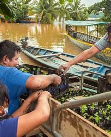 Madre de Dios: agricultores afectados por inundaciones recibirán créditos al 0% de interés