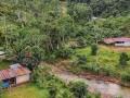 Gobierno suspende erradicación de cocales en Satipo, zona del Vrae